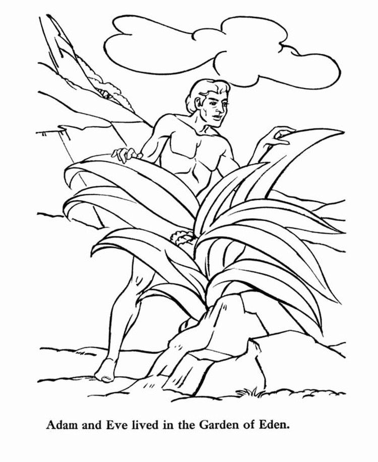 Adam And Eve Coloring Pages Printable Bible Coloring Pages Lds