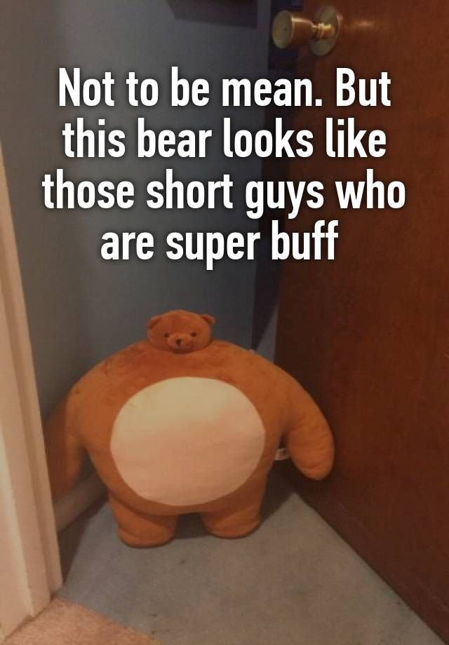 Not To Be Mean But This Bear Looks Like Those Short Guys Who Are Super Buff Cute Memes Buff Guys Mens Shorts