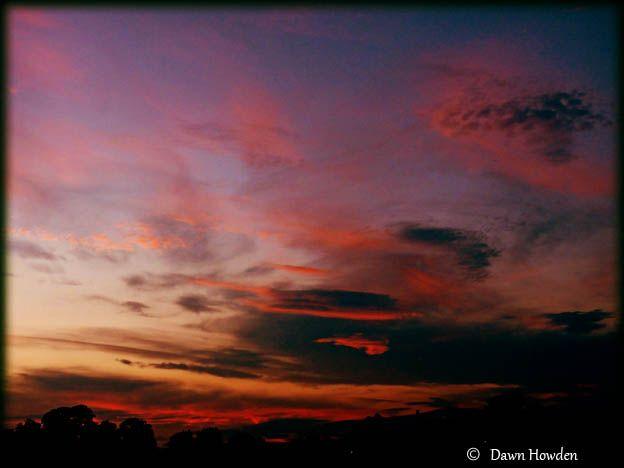 'Wild Sky' by Dawn Howden