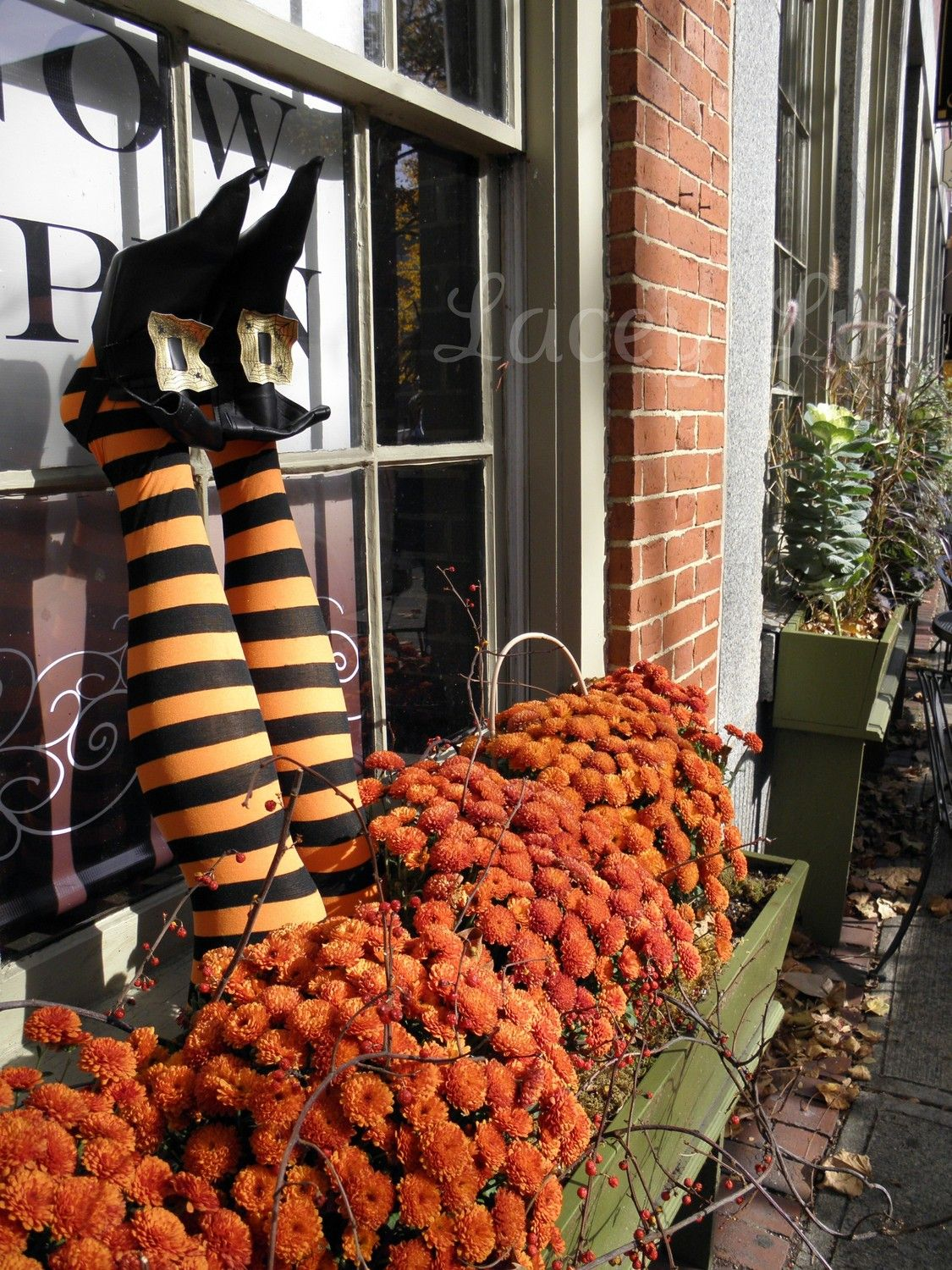 Halloween window decor ideas  halloween flower box  witches legs are made out of pool noodles