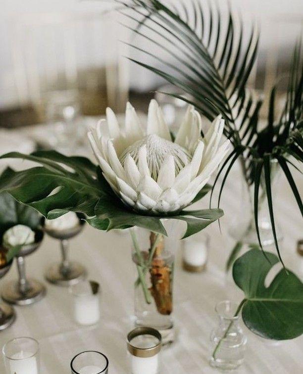 Simply elegant table setting! 🌿🌼 Wedding inspo via Pinterest . .... -  Simply elegant table setting! 🌿🌼 Wedding inspo via Pinterest . .  #adelaidebri - #Elegant #elegantTropicalDecor #inspo #Pinterest #setting #Simply #table #TropicalDecorbedroom #TropicalDecorlivingroom #TropicalDecorparty #Wedding