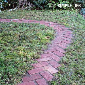 Photo of Rustic Simplicity: DIY Herringbone Garden Path