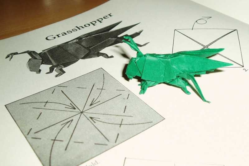 Image Result For Grasshopper Origami