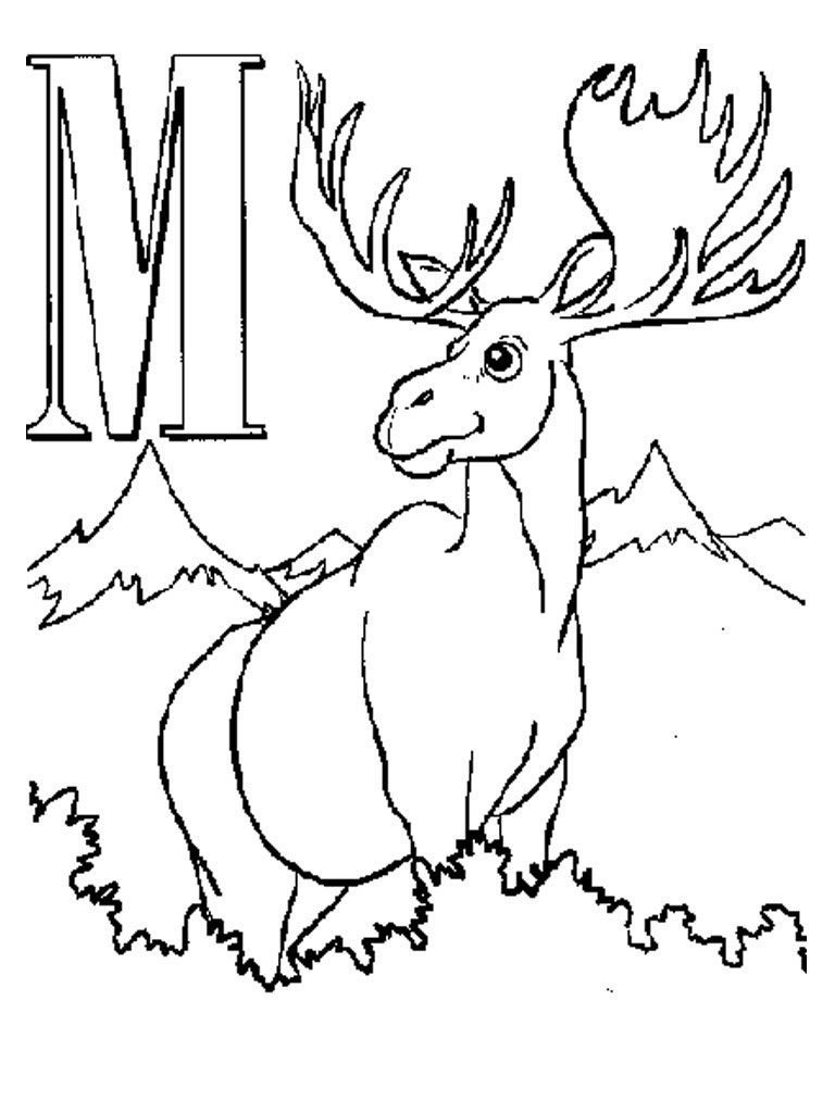 Free Printable Moose Coloring Pages For Kids Coloring Pages