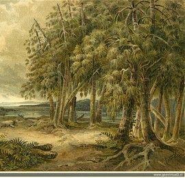 Reconstrucción del Triásico de Neumayr