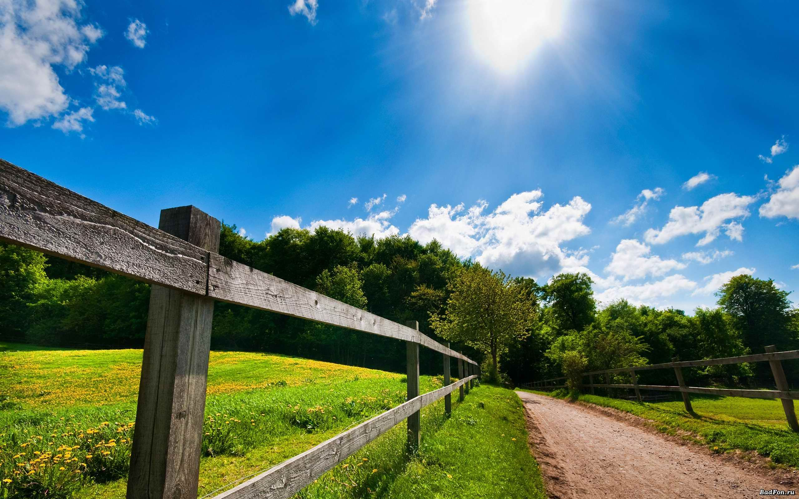 Sunny Bright Day Wallpaper Get Free Top Quality Sunny Bright Day Wallpaper For Your Desktop Pc Background Ios Or Android Mobi Country Roads Nature Landscape