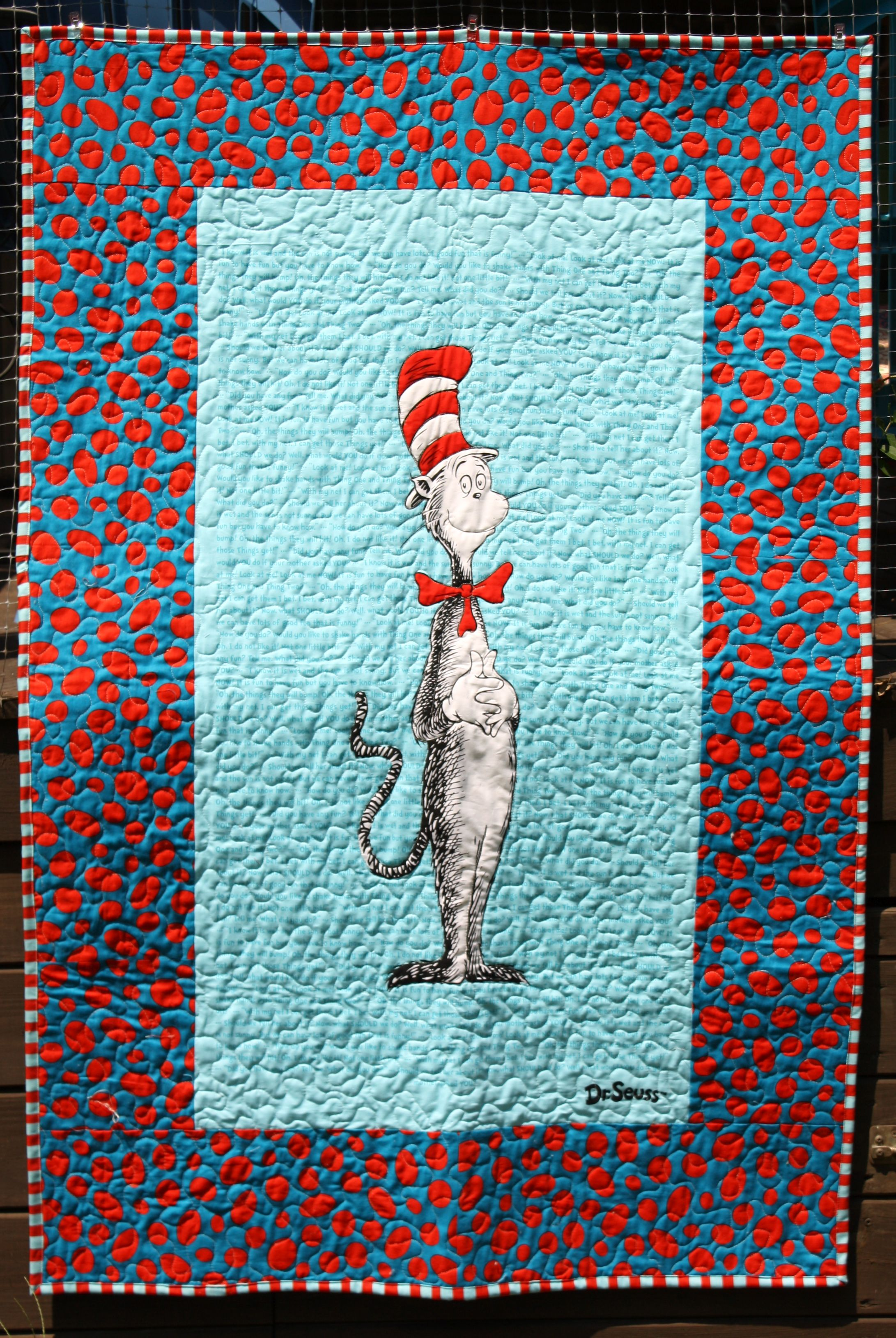 Cat in the Hat quilt Panel quilts, Quilt patterns, Baby