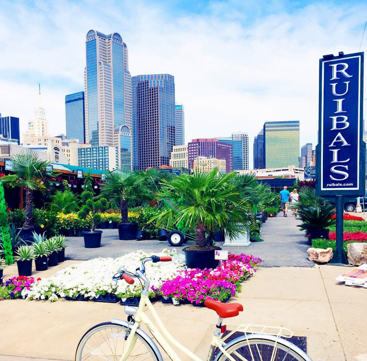 The Best Things To Do In Dallas Texas In 2018 Texas Travel