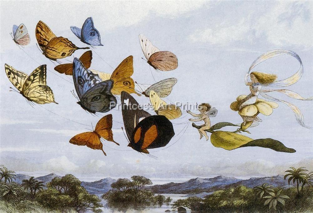Richard Doyle Fairy Art Fairy Queen, A Fairy Kiss, Fairyland SET OF 5 Prints!
