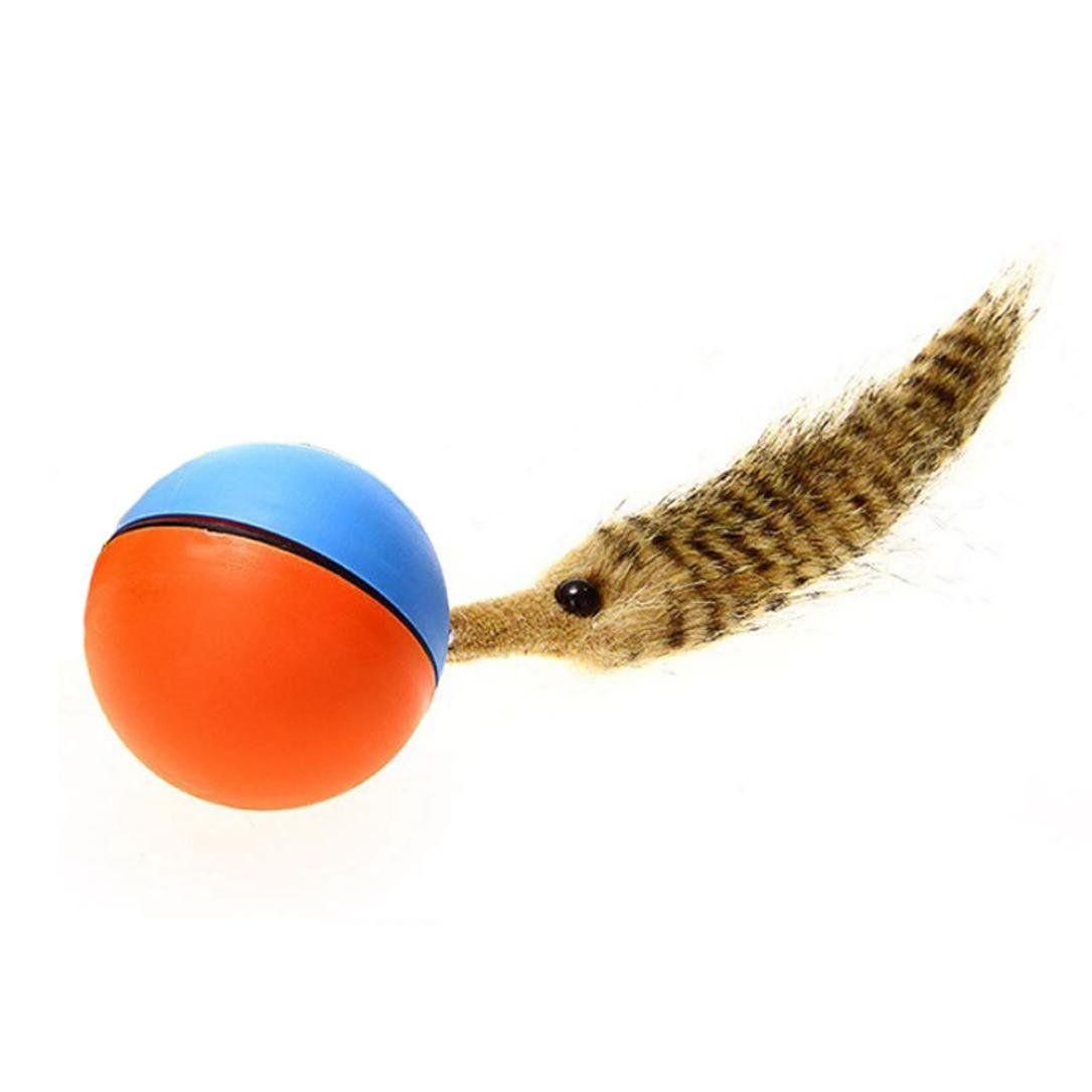 5 25 8 99 Premier Pet Tennis Tail Dog Toy Raccoon Medium The