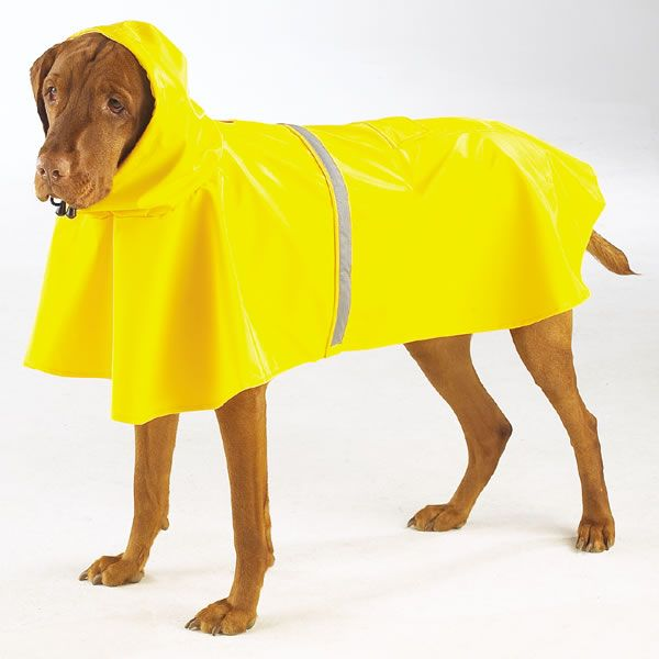 rain poncho for dogs Dog raincoat