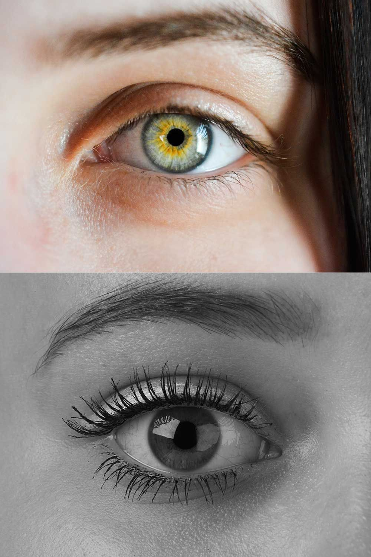 Top 10 best under eye concealer for wrinkles (With images