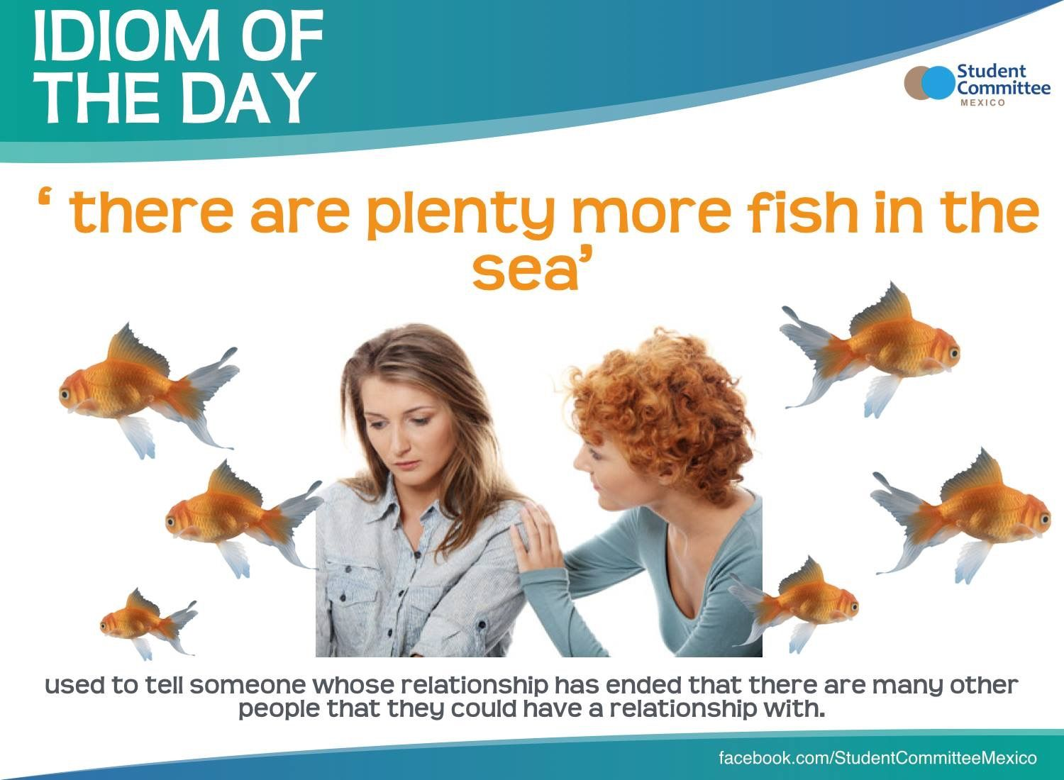 39 there are plenty more fish in the sea 39 idiom of the day for Plenty of fish in the sea