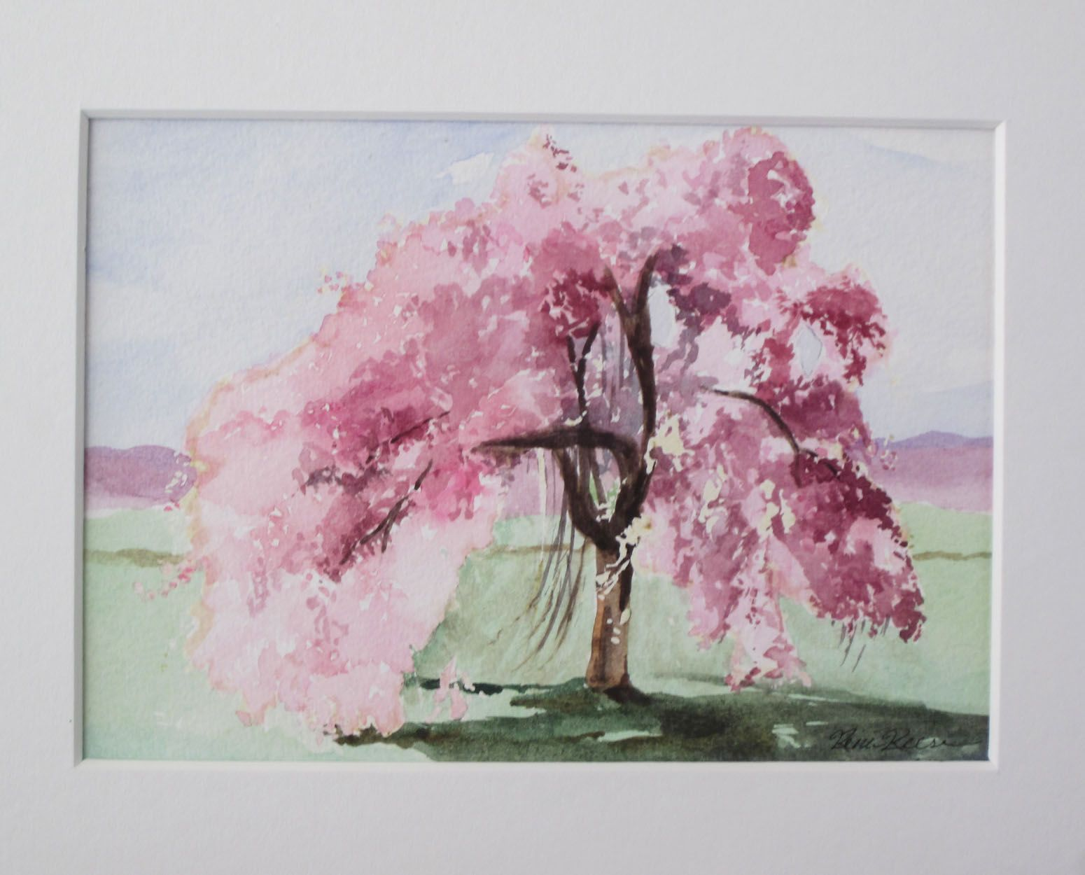 Queen Of All Spring Trees The Weeping Cherry Watercolor Trees Tree Painting Weeping Cherry Tree
