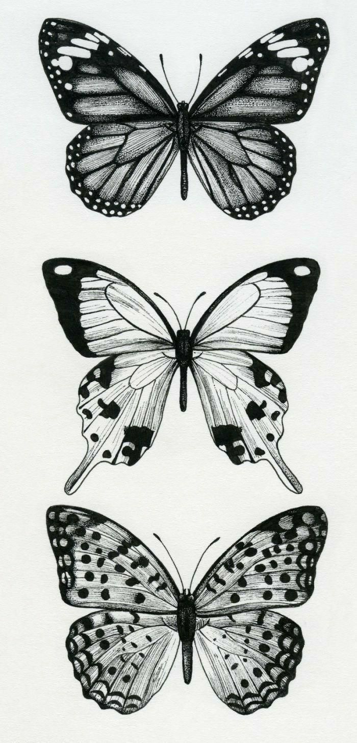 Wurde Ein Cooles Tattoo Ultracooltattoos Tattoo Tibia Cooles In Cooles Tattoo Tibia Ultra Butterfly Thigh Tattoo Butterfly Tattoo Hip Tattoo