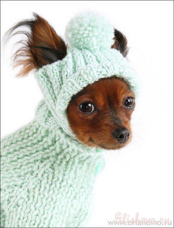 Скачать книгу вязание для маленьких собак