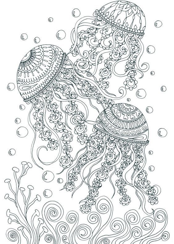 adult coloring jellyfish - Google Search Coloring Pages - fresh abstract ocean coloring pages