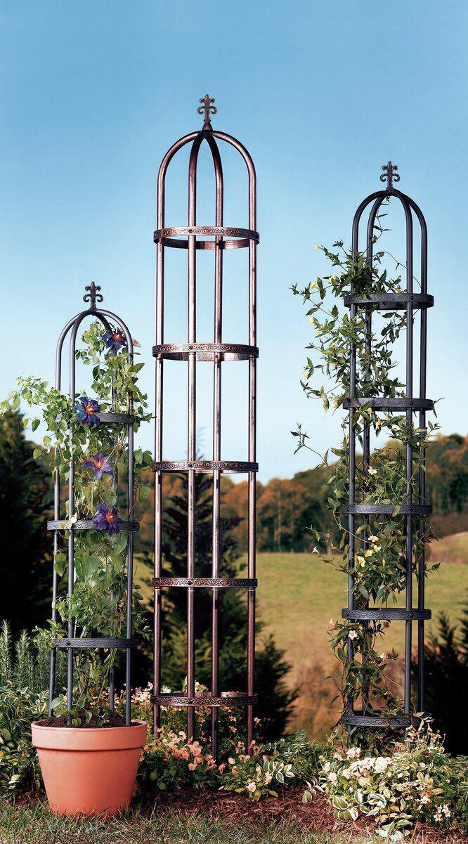 Steel Obelisk Trellis  Planter trellis, Obelisk trellis, Diy