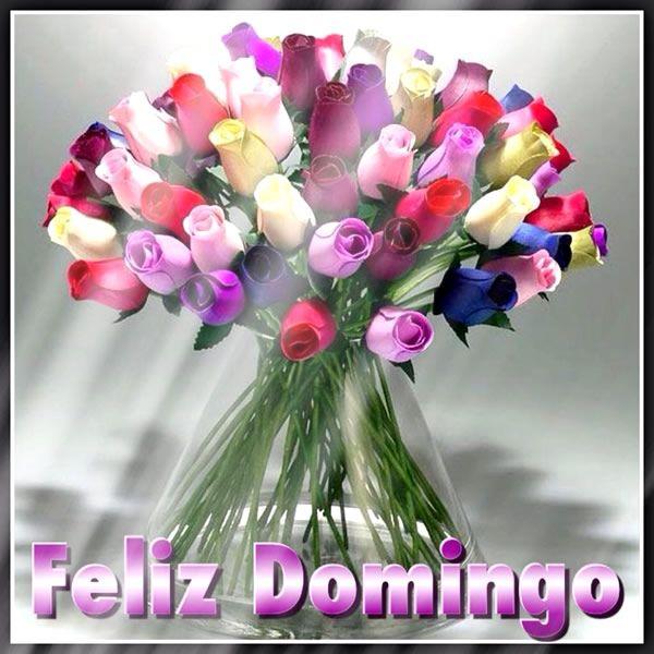Fabuloso Feliz Domingo junto a un bello de ramo de rosas de colores  FU27