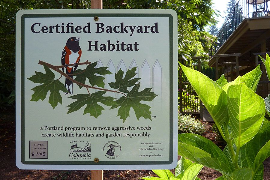 Our Certified Backyard Habitat Plaque!