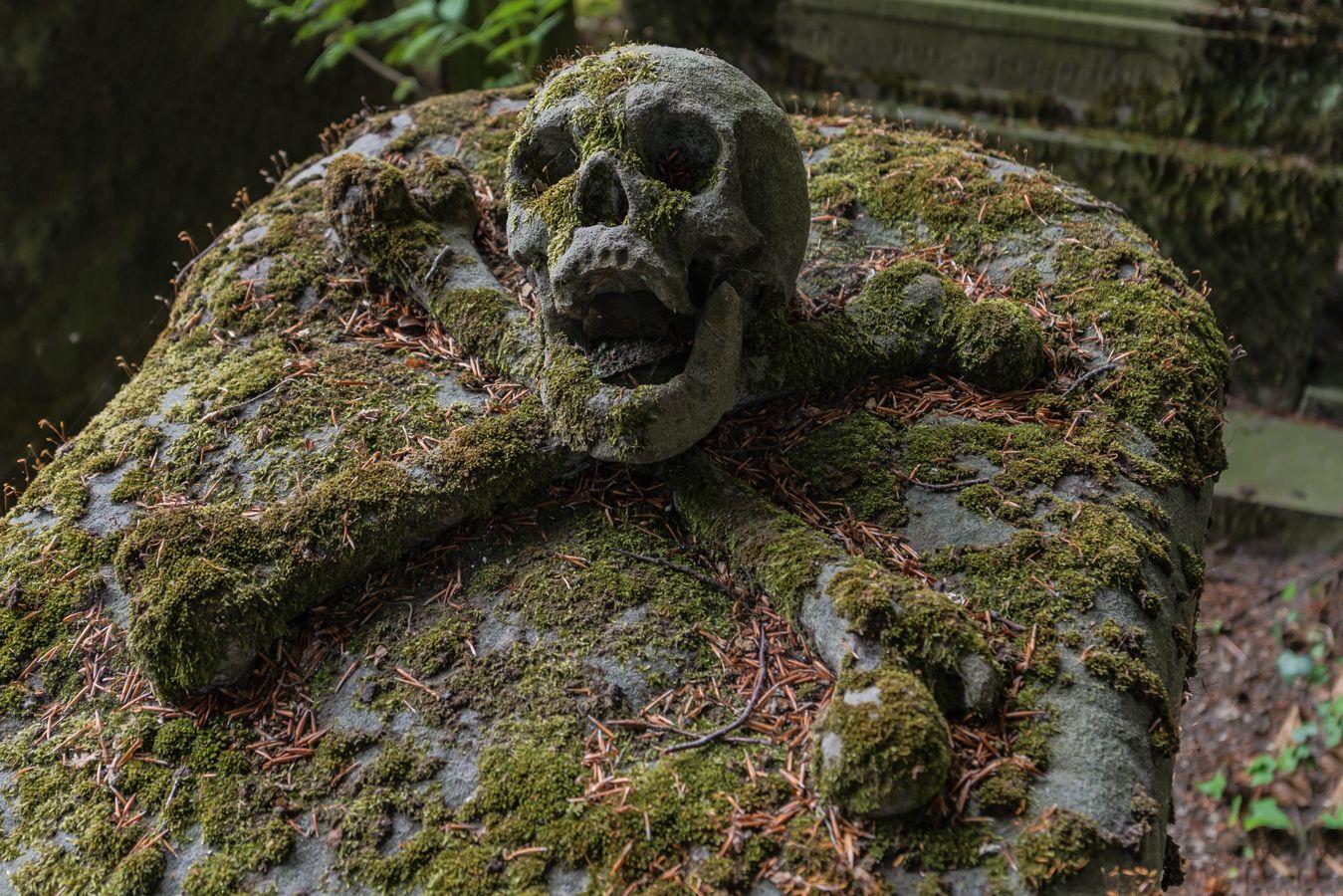 Memento Mori « Romain Veillon