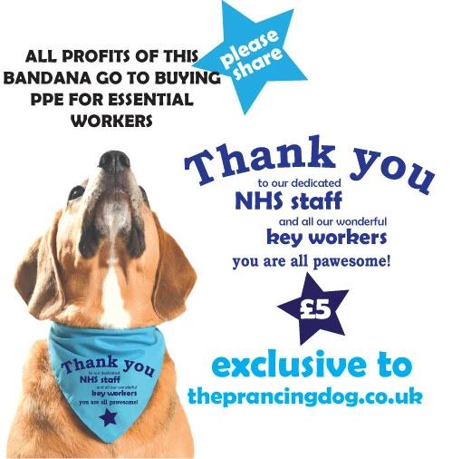 Personalised customised dog bandanas & printed dog coatvest