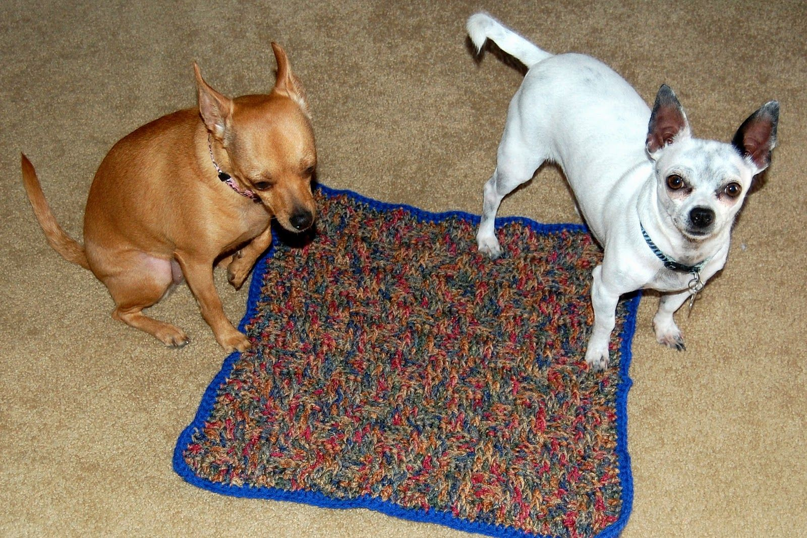 crochet for dogs   Posh Pooch Designs Dog Clothes: Crochet pattern ...