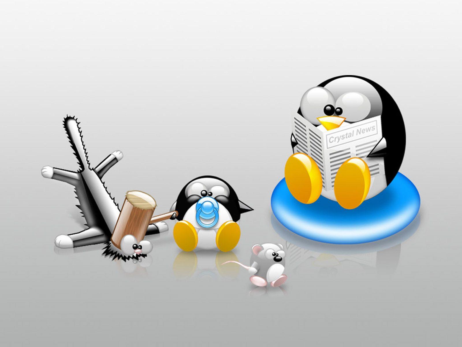 funny linux wallpaper free computer desktop