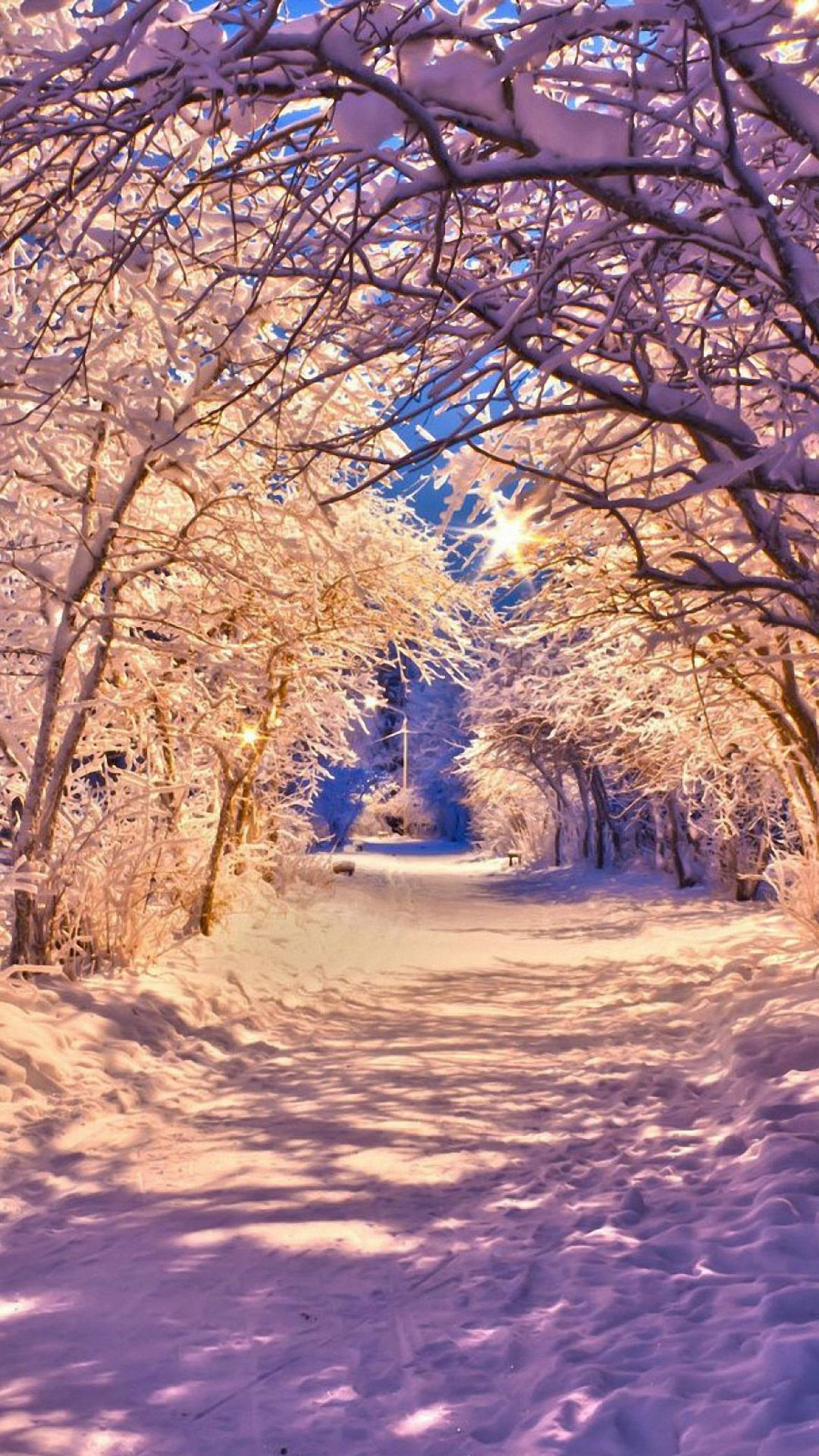 winter snow tree road iphone 6 wallpapers HD (With images