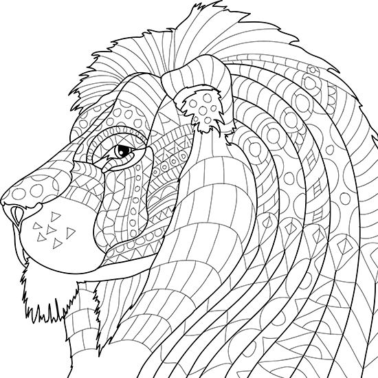 Adult Coloring Pages Animals Animal Kingdom Colouring Book Adult Coloring Book Sets Coloring Book Set