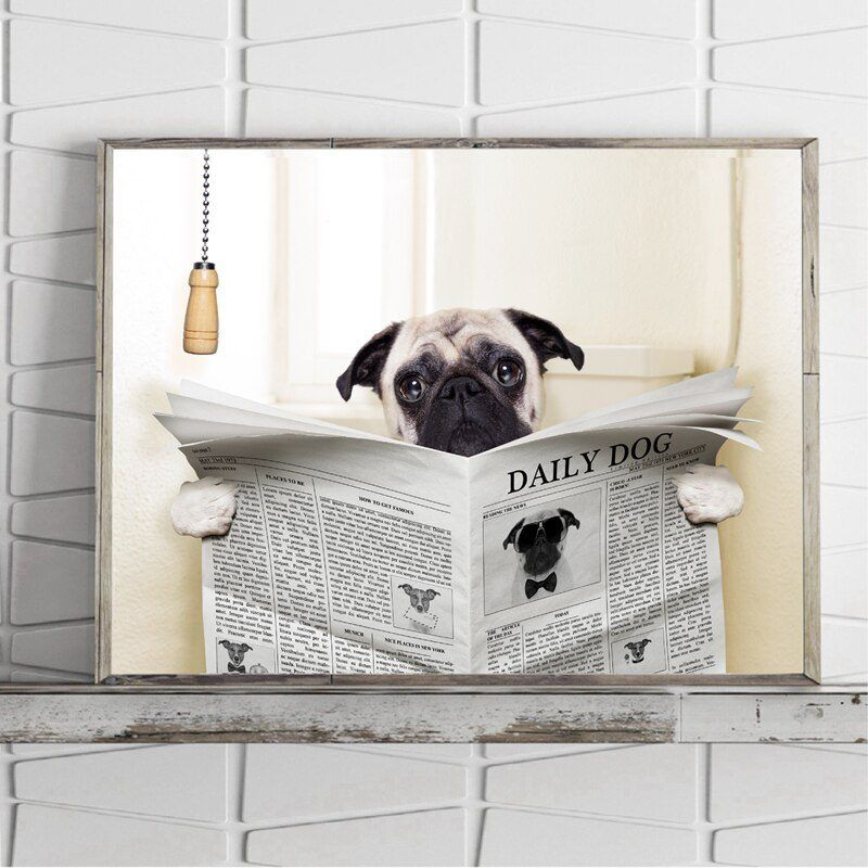 Dog pug on toilet and reading magazine having a break
