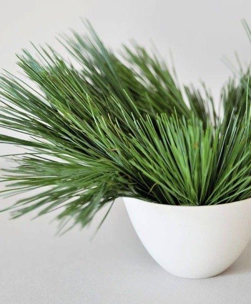 Single-Ingredient Holiday Decor, 10 Ideas