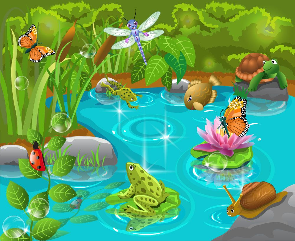 Kids pond mural personalise our wallpaper with your own for Duck pond mural