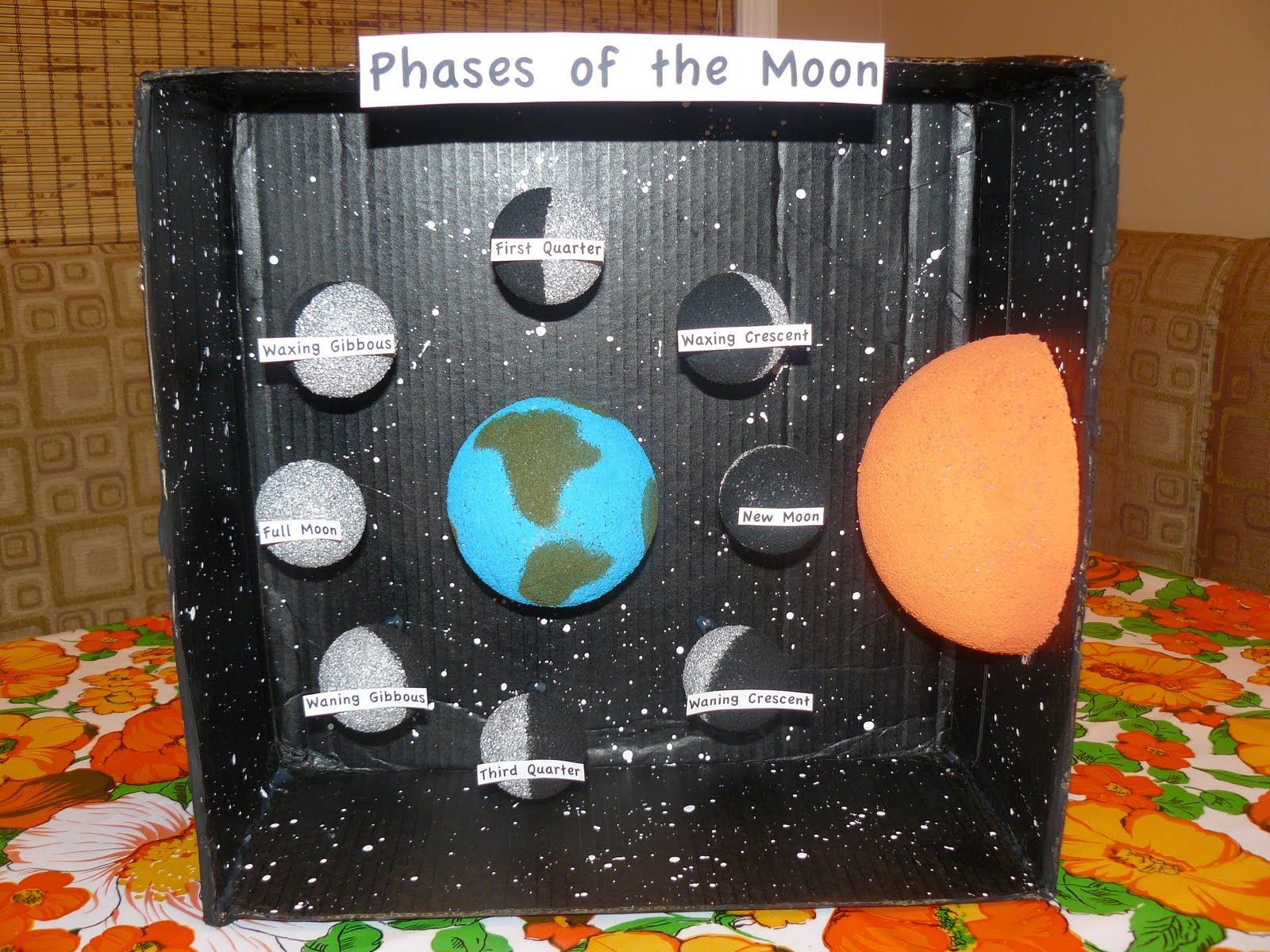 phases of the moon projects | Miss M's science project ...