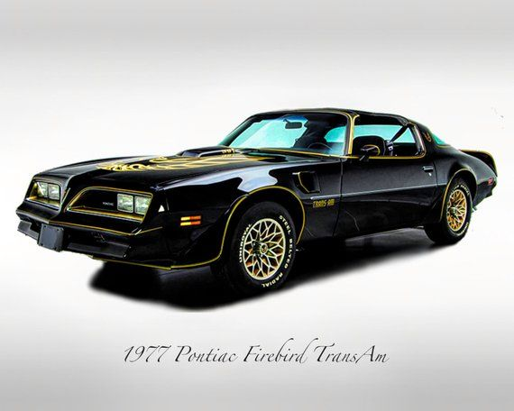 Classic Cars – 1977 Pontiac Firebird Trans Am – Muscle Car – Print