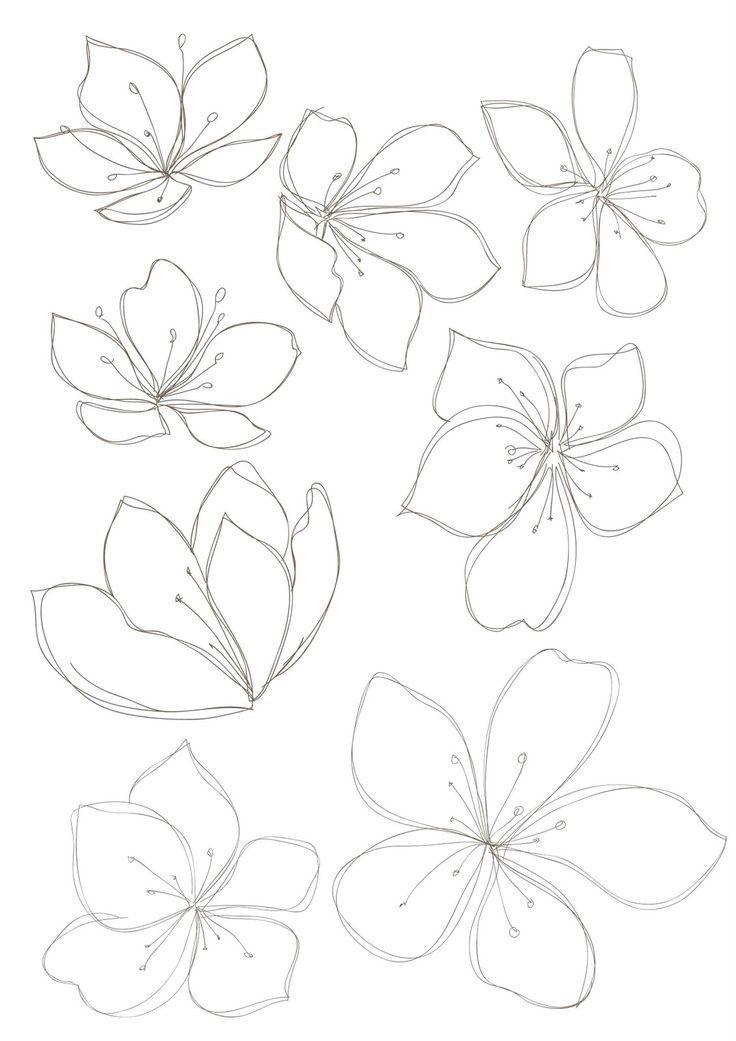 Bobbie Print Floral Drawings Flower Drawing Design Floral