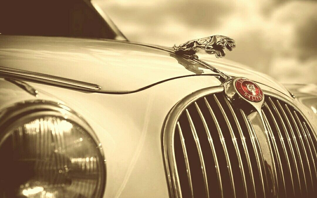 Pin By Magazin Car Designs On Luxury Cars Pinterest Luxury Cars
