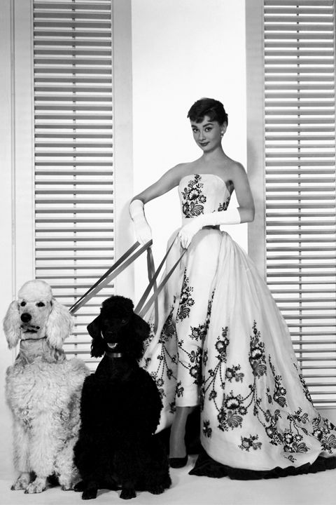 1954. Audrey Hepburn in a dress by Hubert de Givenchy from the movie Sabrina. Photo by ?
