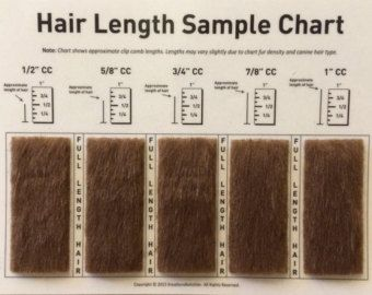 Shave Blade Sample Chart For Grooming Etsy Hair Lengths Grooming Dog Grooming Tips