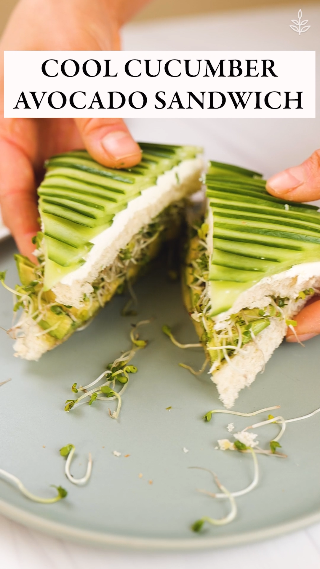 Cool Cucumber Avocado Sandwich