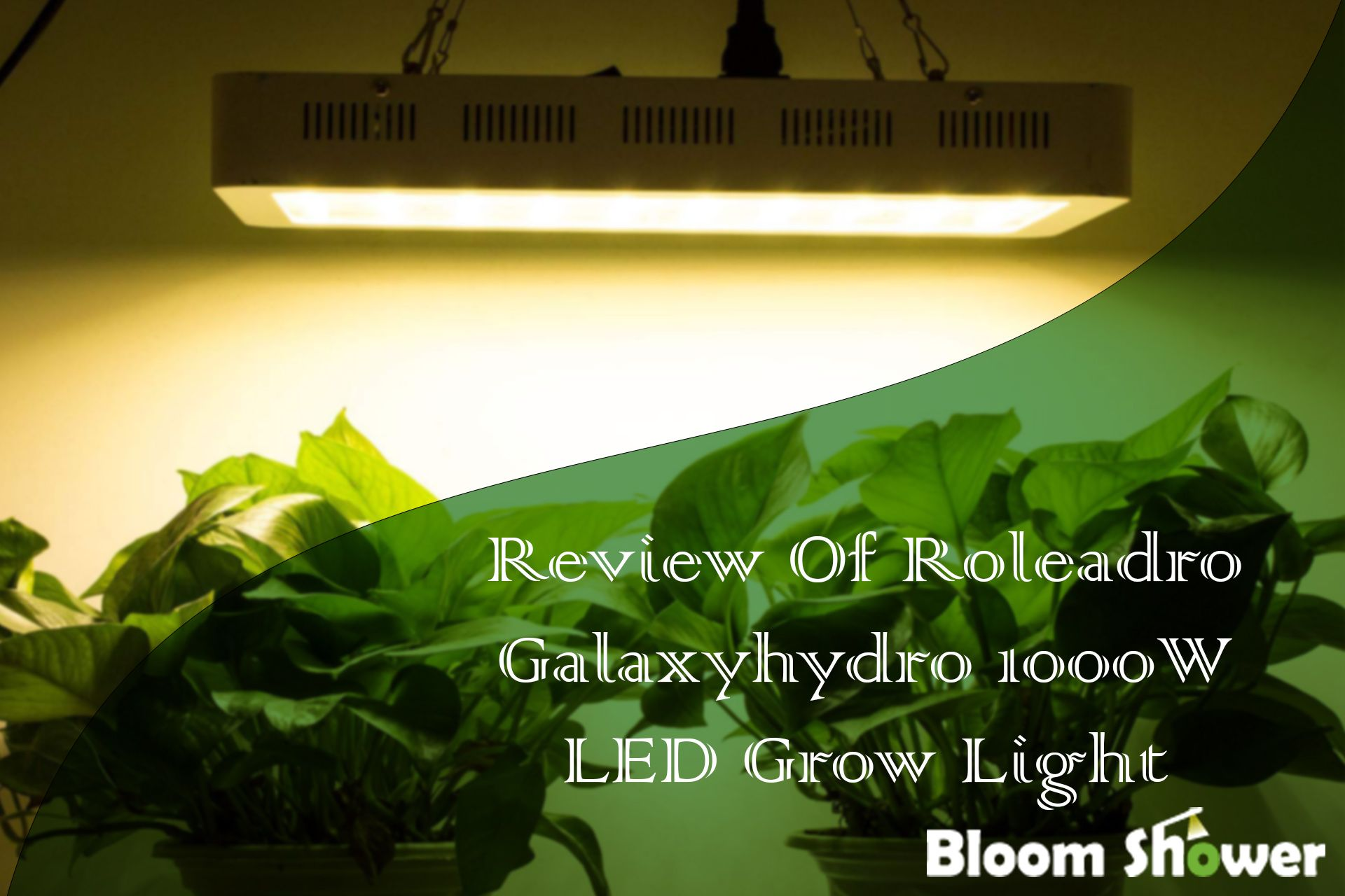 Roleadro Galaxyhydro 1000w Review What To Know Before Buying Led Grow Lights Grow Lights Best Grow Lights