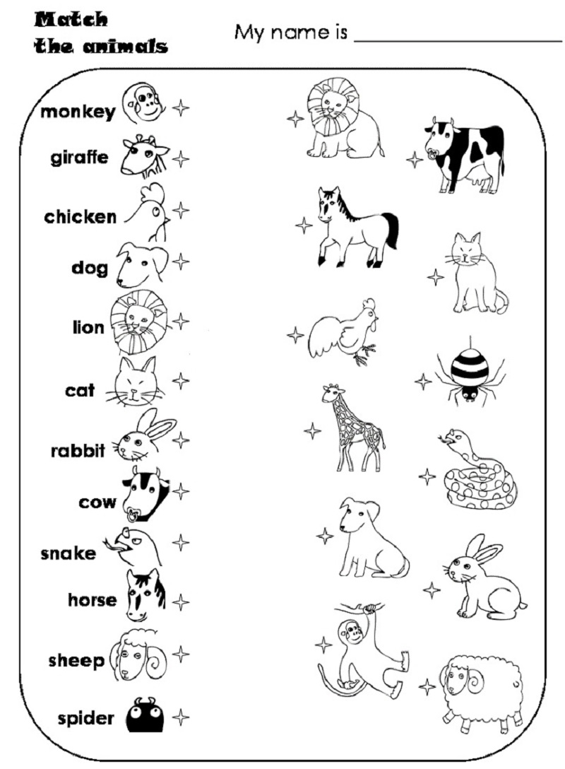 Raindrop Coloring Page (With images) Animal worksheets