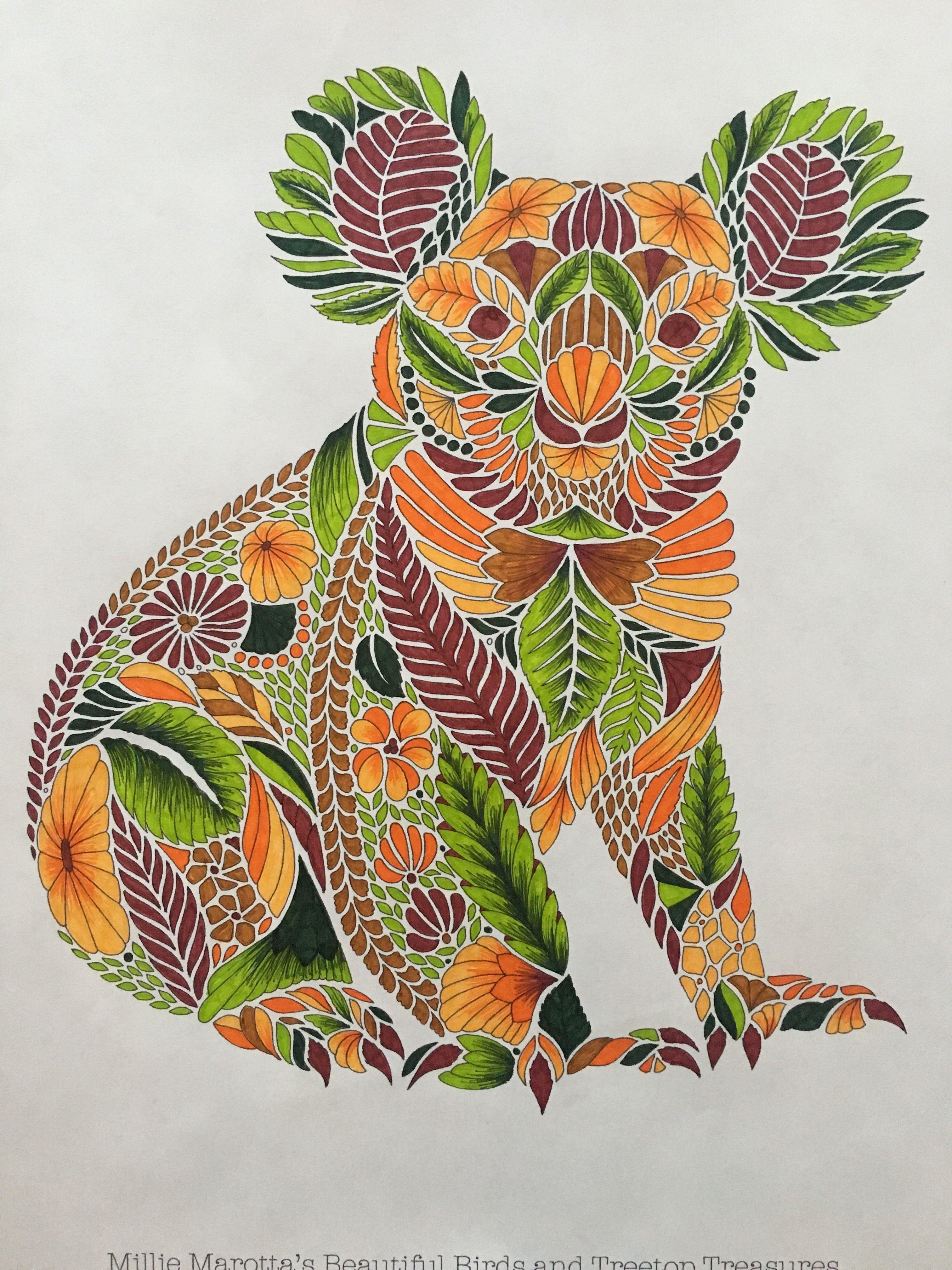 Mille Marotta Koala Coloring Animal Kingdom Colouring Book Millie Marotta Animal Kingdom Millie Marotta Coloring Book