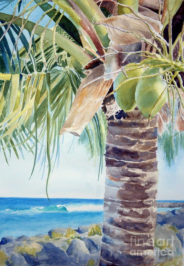 Two Coconuts Painting Palm Trees Painting Tree Watercolor