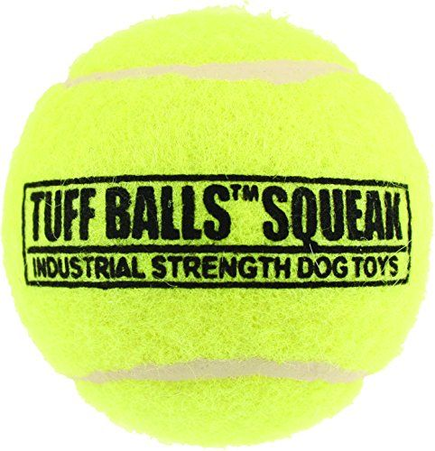PetSport Tuff Ball Squeak Bulk Toy 4Inch ** Click image for more details.(This is an Amazon affiliate link and I receive a commission for the sales)