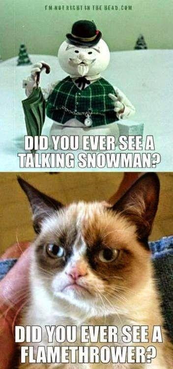 ae32ed6334d3f3336d651eb1045f2271 christmas clean meme central funny cats pinterest meme