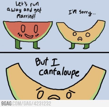 Lets Run Away And Get Married How I Waste My Time Terrible Puns Corny Jokes Puns Cantaloupes are also commonly known as muskmelons, mush melons, rock melons and persian. pinterest