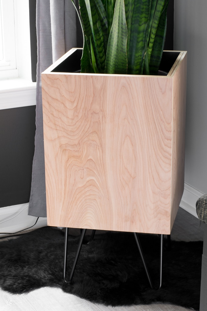 Diy Modern Planter Plywood Planter With Hairpin Legs 640 x 480
