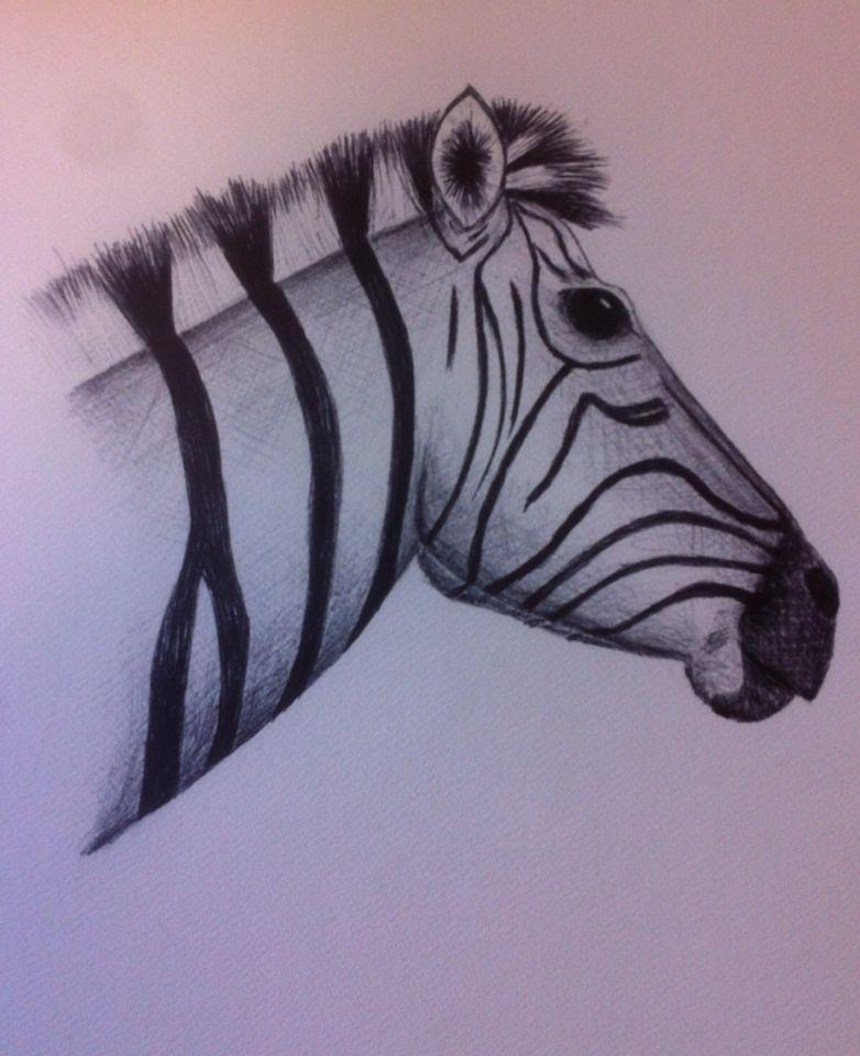 Zebra - pen