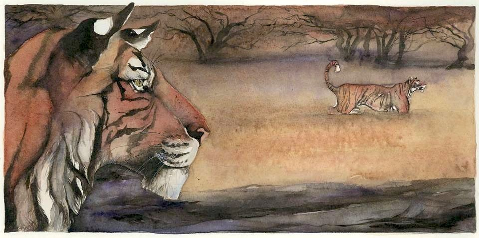 """Tiger watched...  illustrated by Jackie Morris -- From """"Lord of the Forest"""" by Caroline Pitcher"""
